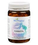 FemNatal