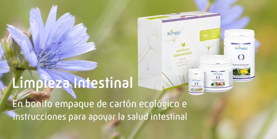 Limpieza Intestinal