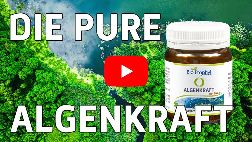Vorschaubild zum Algenkraft-Video