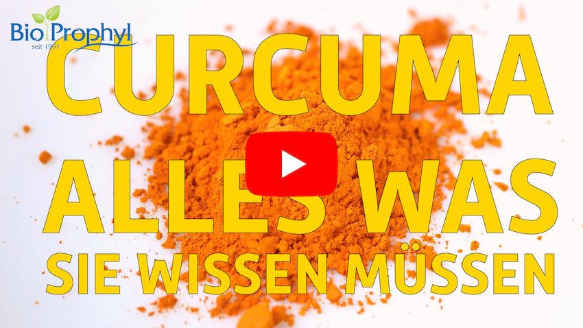 Vorschaubild zum Curcuma-Video