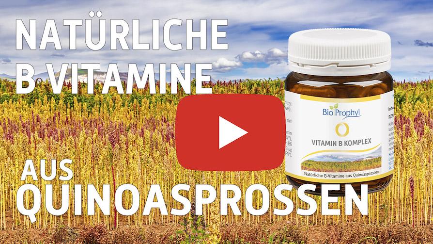 Vorschaubild zum Vitamin B Komplex-Video